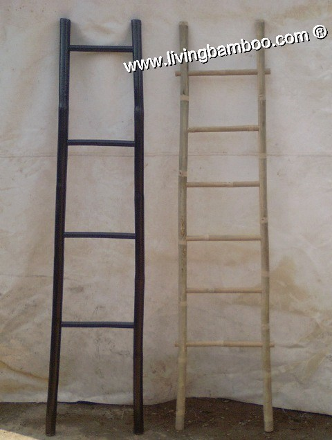 -TV BAMBOO LADDER