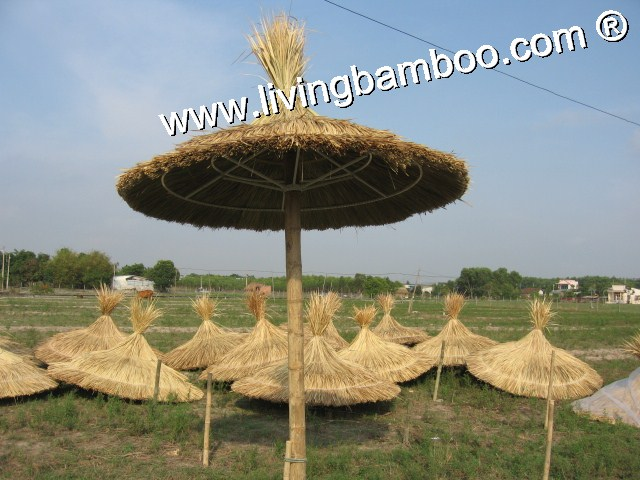 Bamboo Umbrella-CUT THATCH UMBRELLA