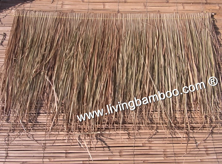 -THATCH MATERIAL GRADE 1
