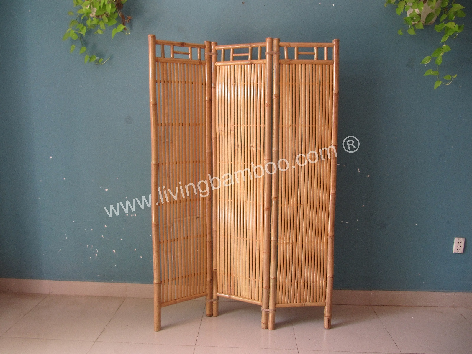 -BAMBOO SCREEN